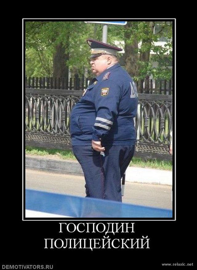 приколы про россию 18 триммеры купить отлично